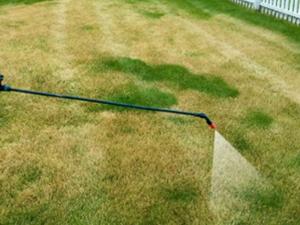 Postrek proti burine v trávniku